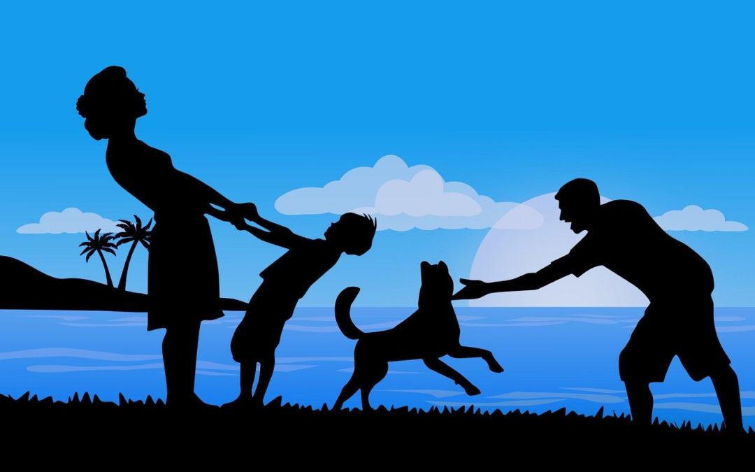 Игры в кругу семьи.